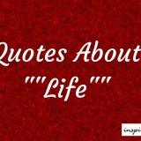 20+ Inspirational Quotes About Life